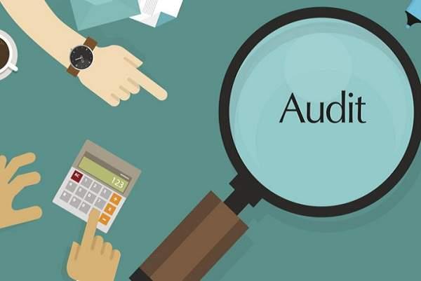 statutory audit process